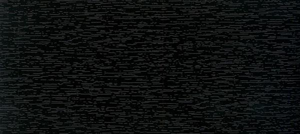Zwartbruin